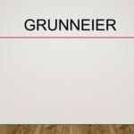 Grunneier